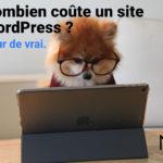 Chien qui regarde une tablette avec un texte : combien coûte un site Wordpress ?