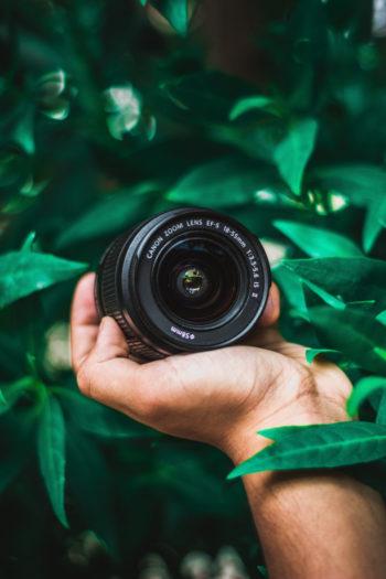 Lentille de photographe dans une plante tropicale verte tenue par une main